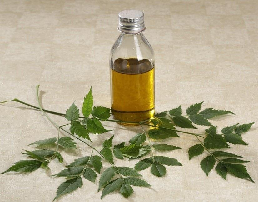 huile-neem-cheveux